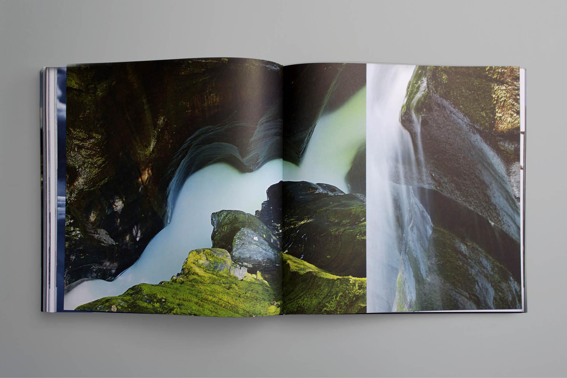 Prozess Wag Buch Natur